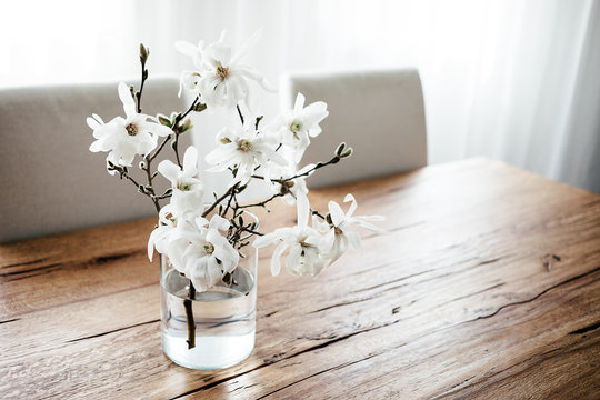 White magnolia twigs freshly cut from magnolia tree. Glass vase standing on wooden table with white magnolia flowers. First spring blossom, nature awakening.