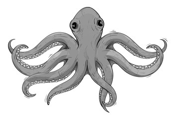 Octopus. Gray hand drawn sketch