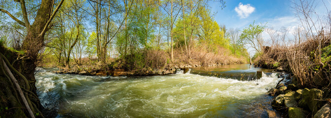 Landscape in spring with river and trees