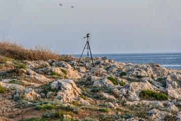mediterranean spring, menorca, balearic islands, spain