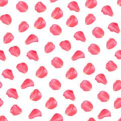 Vector Illustration. Elegance petals pattern. Seamless background with set rose petals on white background