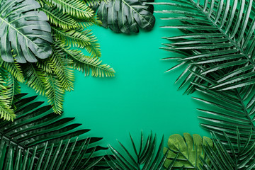 flat lay border of green natural tropical leaf  border frame on color background with free copy space for your creativity ideas texts