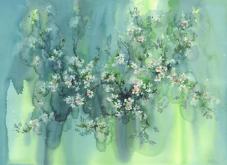 cherry blossom watercolor background