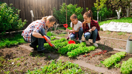 Happy young woman with daughters planting seeds in garden Fototapete
