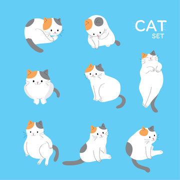 Cartoon cute actions adorable cat vector.
