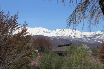 長野県白馬村 茅葺屋根と北アルプス