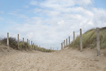 Path in the dunes to the beach