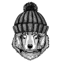 Wolf Dog Cool animal wearing knitted winter hat. Warm headdress beanie Christmas cap for tattoo, t-shirt, emblem, badge, logo, patch