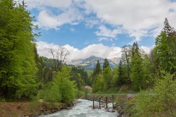 Idylle in den bergen mit Fluss und Bäume