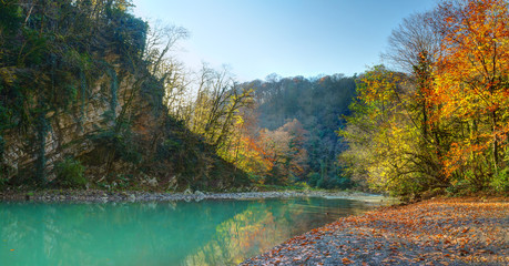 Landscape of canyon, mountains and Khosta River in Yew and Box-tree Grove in sunny autumn day, Sochi, Russia
