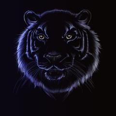 tiger head on black background, vector illustration, for design,