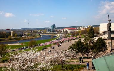 Spring in Vilnius