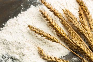Espigas de trigo harina