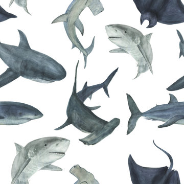 Watercolor painting seamless pattern with sharks. Sea background