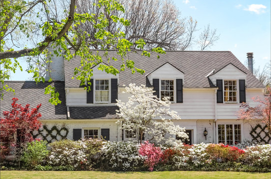 Traditional upscale home with dogwood tree and azelea bushes - beautifully landscaped in springtime