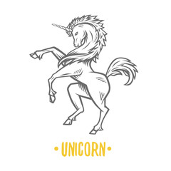 Vector image of heraldic unicorn.