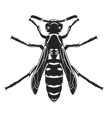 Dark silhouette of wasp. View from above. Vector illustration.