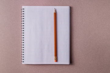 Mockup.Pink paper background and opened notebook with pencil.