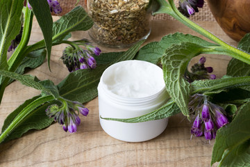A jar of comfrey cream with fresh symphytum plant