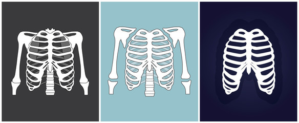 Three different x-rays of chest. Vector illustration.