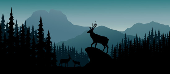 Silhouette deer in hill at night