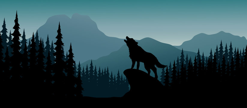 Silhouette wolf on hill in the night
