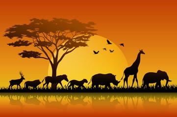 Silhouette animals on lake savannas