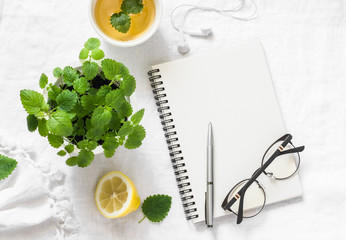 Morning planning inspiration and melissa lemon green tea. Blank notepad, cup of tea, melissa flower pot on a white background, top view. Flat lay