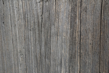 Old wood texture. Abstract background with natural wood pattern. Close-up.