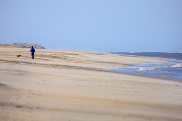 Woman walking on beach with her dog in denmark