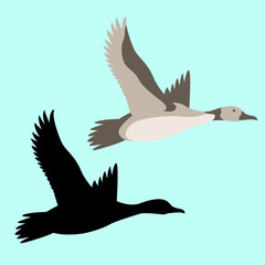 goose  vector illustration flat style  black silhouette