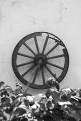 Old Horse Cart Wooden Wheel Hanging On The Wall