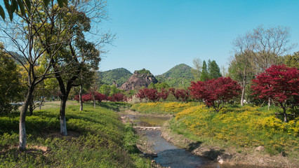 Landscape of park with green and red trees, river and mountains on sunny day