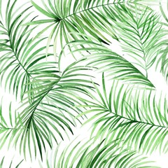 Watercolor palm leaves pattern in vector. Tropical packground for your design.