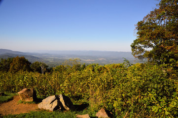 Looking into the Shenandoah Valley from Skyline Drive