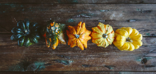 Colorful Pumpkin on a wooden board