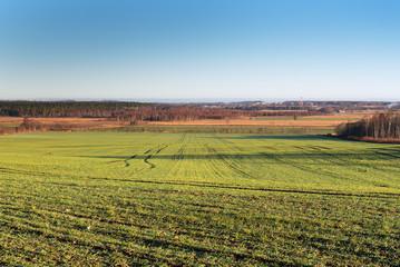 Green fields in autumn time, Tukums area, Latvia.