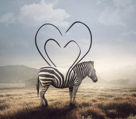 Wall Murals Zebra Zebra and heart stripes