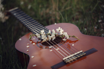 Guitar lying on grass. Concept: song of spring and love. Toning image