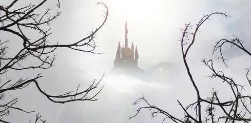 fairytale castle in mist from spooky wood