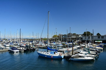 Oak Bay Marina in Victoria BC,Canada is a local landmark.Filled with pleasure craft and boats of many designs.Come to Victoria and visit Oak Bay.