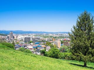 青空が広がる東京郊外の住宅街