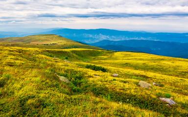 Carpathian alps with huge boulders on hillsides. beautiful summer landscape on overcast day. Location Polonina Runa, Ukraine
