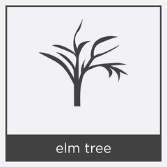 elm tree icon isolated on white background