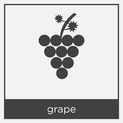 grape icon isolated on white background