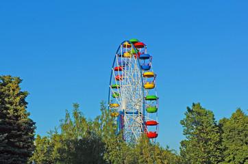 Ferris wheel in the trees