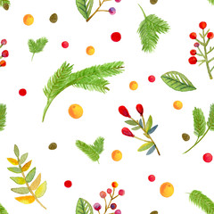 watercolor Christmas seamless pattern, hellebore flowers, red berries, white background