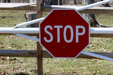 A close view of the stop sign on the metal gate.