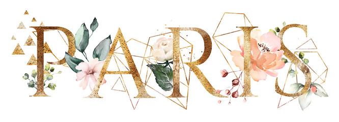 watercolor illustration with wild flowers, herbs, rose. Cool print on T-shirt with geometric shape.  Lettering - paris