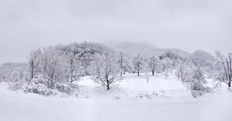 아름다운 한국의 겨울 산
